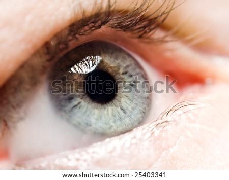 eye, macro - stock photo