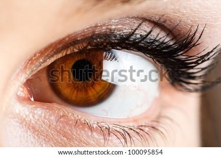 Eye of a beautiful woman - stock photo