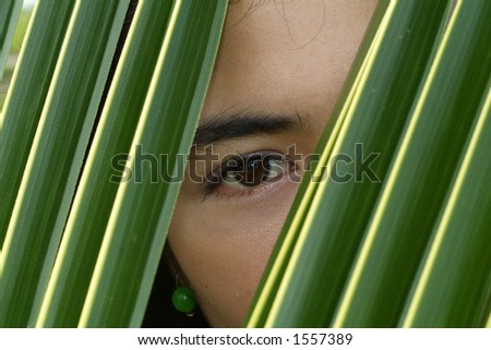 Eye of Asian beauty looking through a palm leaf