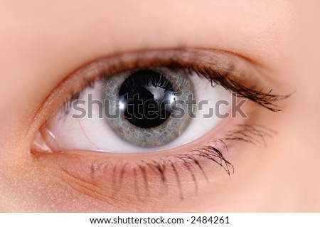 Eye of girl close up