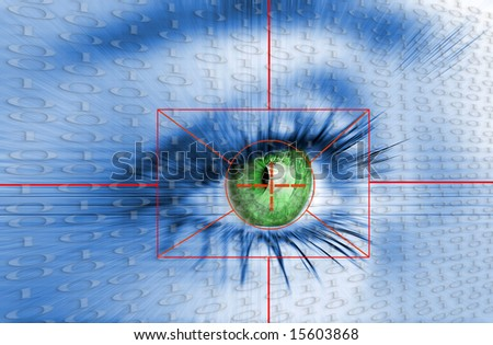 Eye system security identification.