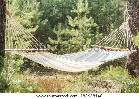 fabric hammock strung between two trees in pine forest - stock photo
