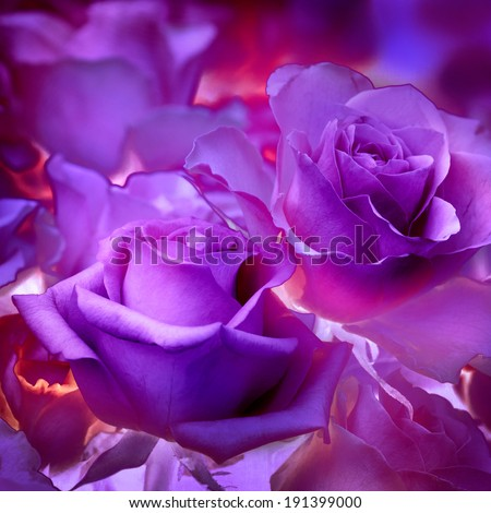 Fabulous floral pattern. Abstract flowers. Rose. - stock photo