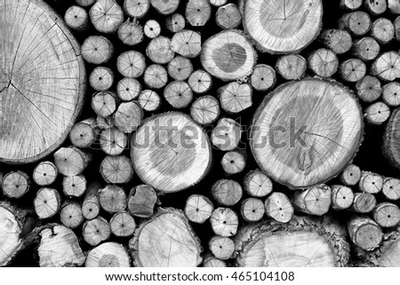 Facade of stacks of chopped timber log. Processed in monochrome.