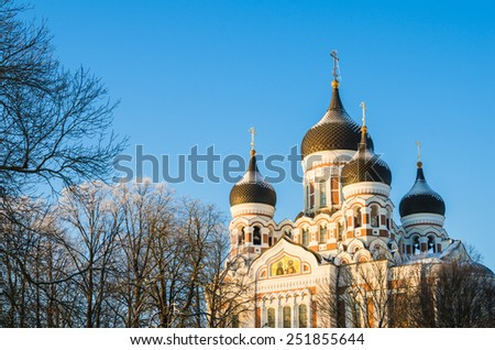 Facade of the Alexander Nevsky Cathedral in Tallinn - stock photo