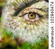 Face with brown eye and painted dandelion - stock photo