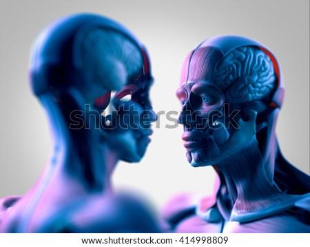 Facing Human Anatomy Models Male Female Stock Illustration 414998809