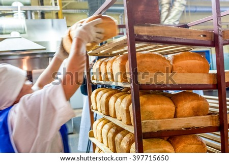 factory worker puts bread on the shelves - stock photo
