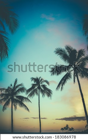 Faded Retro Style Photo Of Palm Trees In Hawaii At Sunset - stock photo