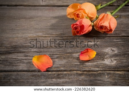 faded rose on wooden background - stock photo