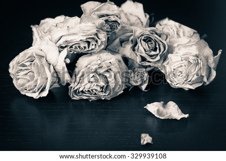Faded roses on a wooden table close up. Black and white - stock photo