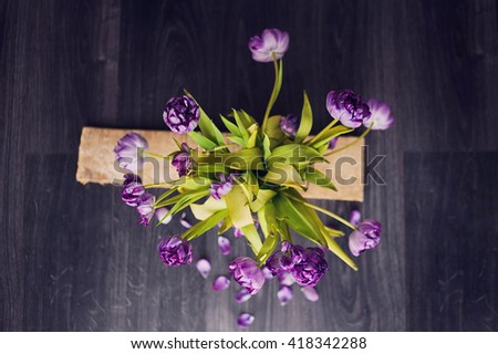 Fading bouquet of violet tulips in vase on wooden gray background. Beautiful petals. - stock photo