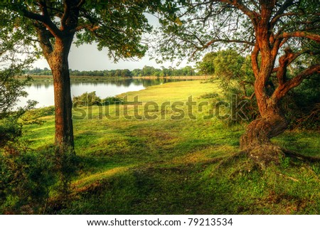 Fairytale style image of forest scene with lake and trees during vibrant sunset - stock photo
