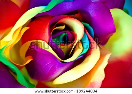 fake colorful rose as handicraft flower - stock photo