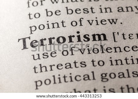Fake Dictionary, Dictionary definition of the word terrorism
