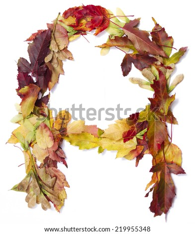 Fall alphabet letter A - stock photo