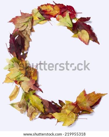 Fall alphabet letter C - stock photo