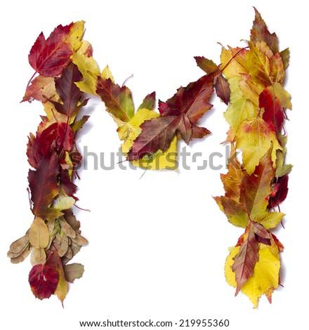 Fall alphabet letter M - stock photo
