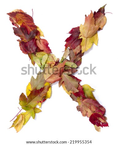 Fall alphabet letter X - stock photo