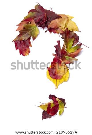 Fall alphabet question - stock photo