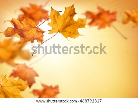 Fall background with orange and red falling autumn leaves