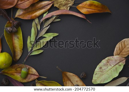 Fall background with yellow autumn leaves, acorns over dark surface, Thanksgiving background - stock photo