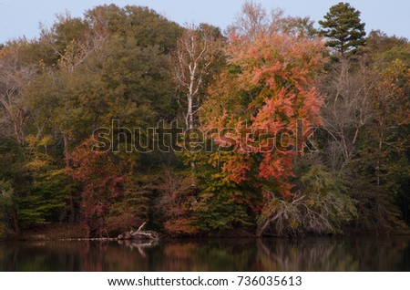 Fall color along the river at Landsford Canal State Park, South Carolina