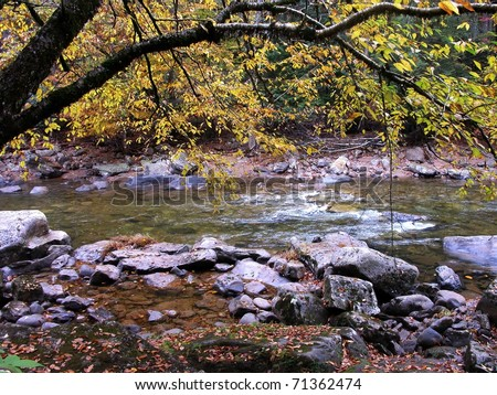 Fall color, Williams River, Monongahela National Forest, West Virginia, USA