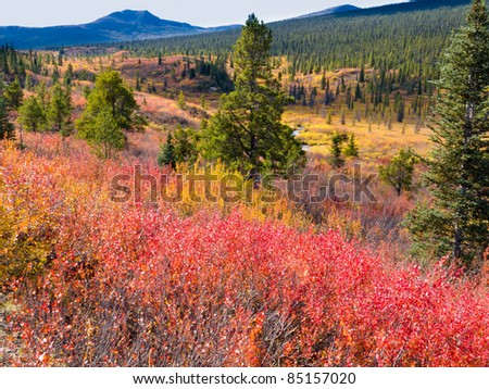 Fall colored valley among hills and mountains covered with boreal forest in Yukon Territory, Canada - stock photo