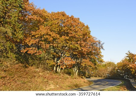 Fall Colors along a Mountain Road in Shenandoah National Park in Virginia - stock photo
