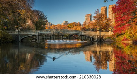Fall colors at Bow Bridge in Central Park. New York City  - stock photo