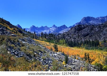 Fall Colors Bishop California - stock photo