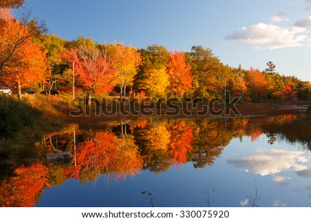 Fall colors in Acadia National Park - stock photo