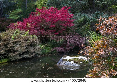 Kubota stock images royalty free images vectors for Japanese garden colors