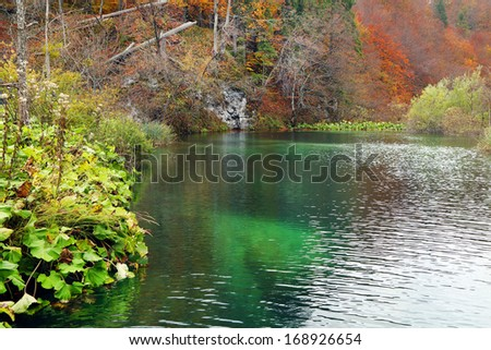 Fall colors in Plitvice National Park, Croatia, Europe
