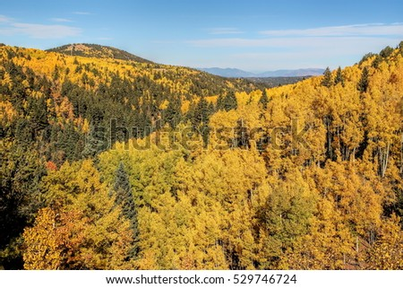 Fall colors in the Colorado mountains