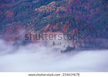 Fall colors mountain hills - stock photo
