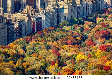 Fall colors of Central Park foliage in late afternoon. Aerial view toward Central Park West. Upper West Side, Manhattan, New York City - stock photo