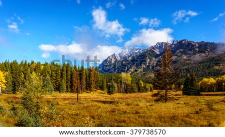 Fall Colors of the forest in the Rocky Mountains in Banff National Park in the Rocky Mountains in British Columbia, Canada - stock photo