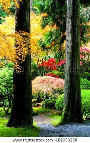 Fall colors on trees in a garden. - stock photo