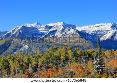 Fall colors with fresh snow in the Utah mountains, USA. - stock photo