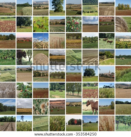 fall countryside, 64 pictures - stock photo