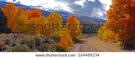 Fall Foliage at the Eastern Sierra Nevada Mountains in California - stock photo