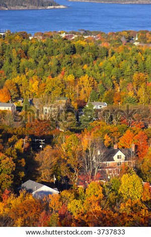Fall foliage colors and details in Acadia National Park in Maine, New England, during their famous Autumn - stock photo