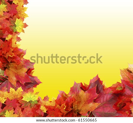 fall foliage frame on yellow background