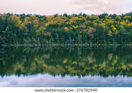 Fall foliage in New Hampshire, New England - stock photo