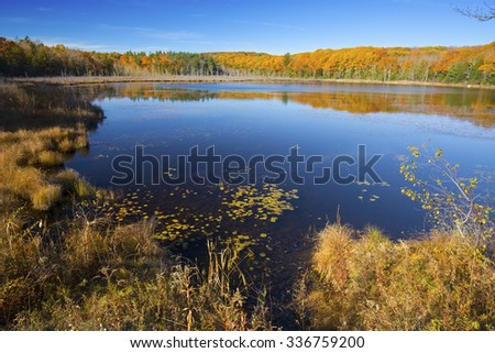 Fall foliage on the shoreline encircling Pond Hill Pond in Norfolk, Connecticut, with blue skies on a sunny day in October. - stock photo