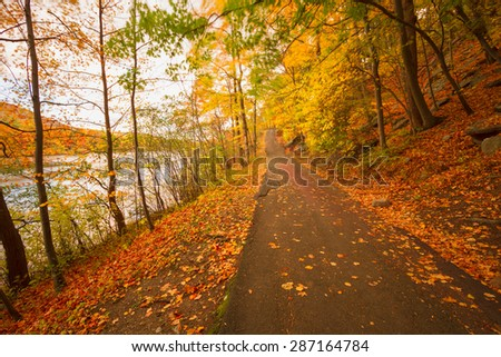 Fall Landscape Stock Images Royalty Free Images Vectors
