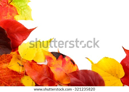 Fall leaves background with copy space - stock photo