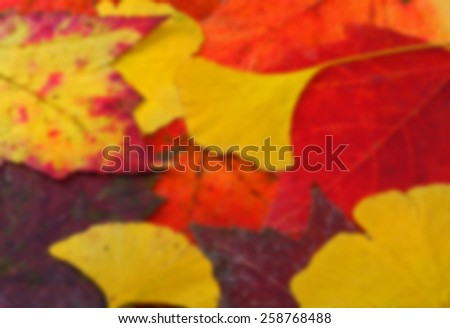 Fall Leaves Blur - stock photo